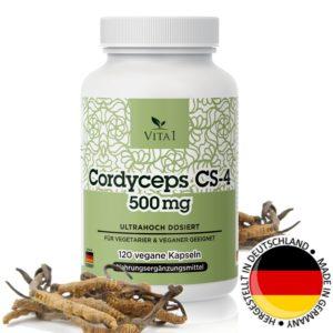 Cordyceps Extrakt